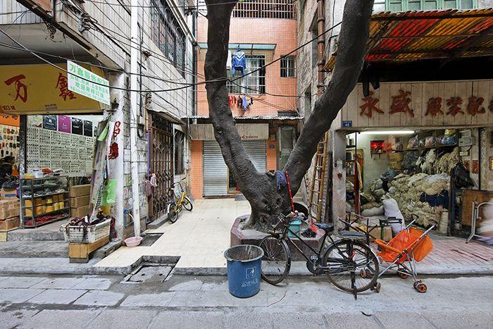FMarsh_Guangzhou_2.jpg
