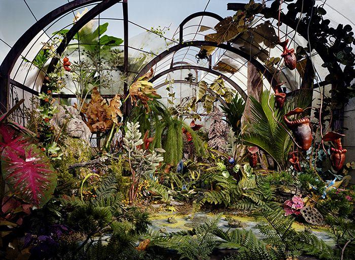 LoriNix_Botanic_Garden.jpg